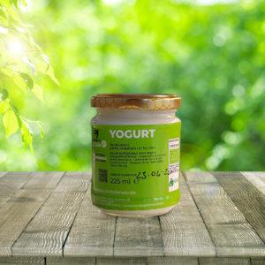 yogurt bio