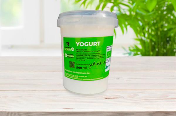 Yogurt 500ml